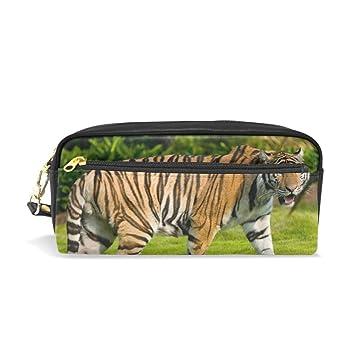 Big Tiger - Estuche para lápices, gran capacidad, para maquillaje, cosméticos, escuela