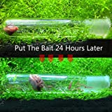 Hamiledyi Planaria Trap Leeches Catcher Pest Glass