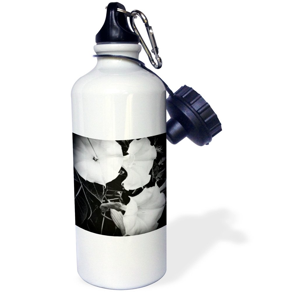 Multicolored 3dRose Three Moonflowers Freshly Bloomed in a Michigan Garden-Sports Water Bottle wb/_165279/_1 21oz