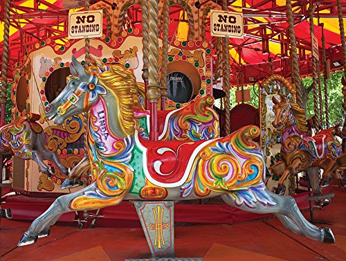 Colorful Carousel Lpf Colorluxe 1000 Piece Puzzle