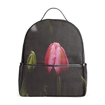 Amazon.com: Mochilas para portátil Chrysanthemums color ...