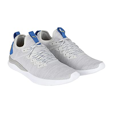 info for 55be2 f3c70 Puma Ignite Flash Evoknit Glacier Gray W