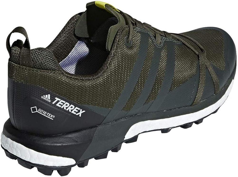 adidas outdoor Mens Terrex Agravic GTX