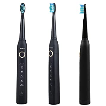 Amazon.com: New Sonic Electric Toothbrush USB Charge Rechargeable ...