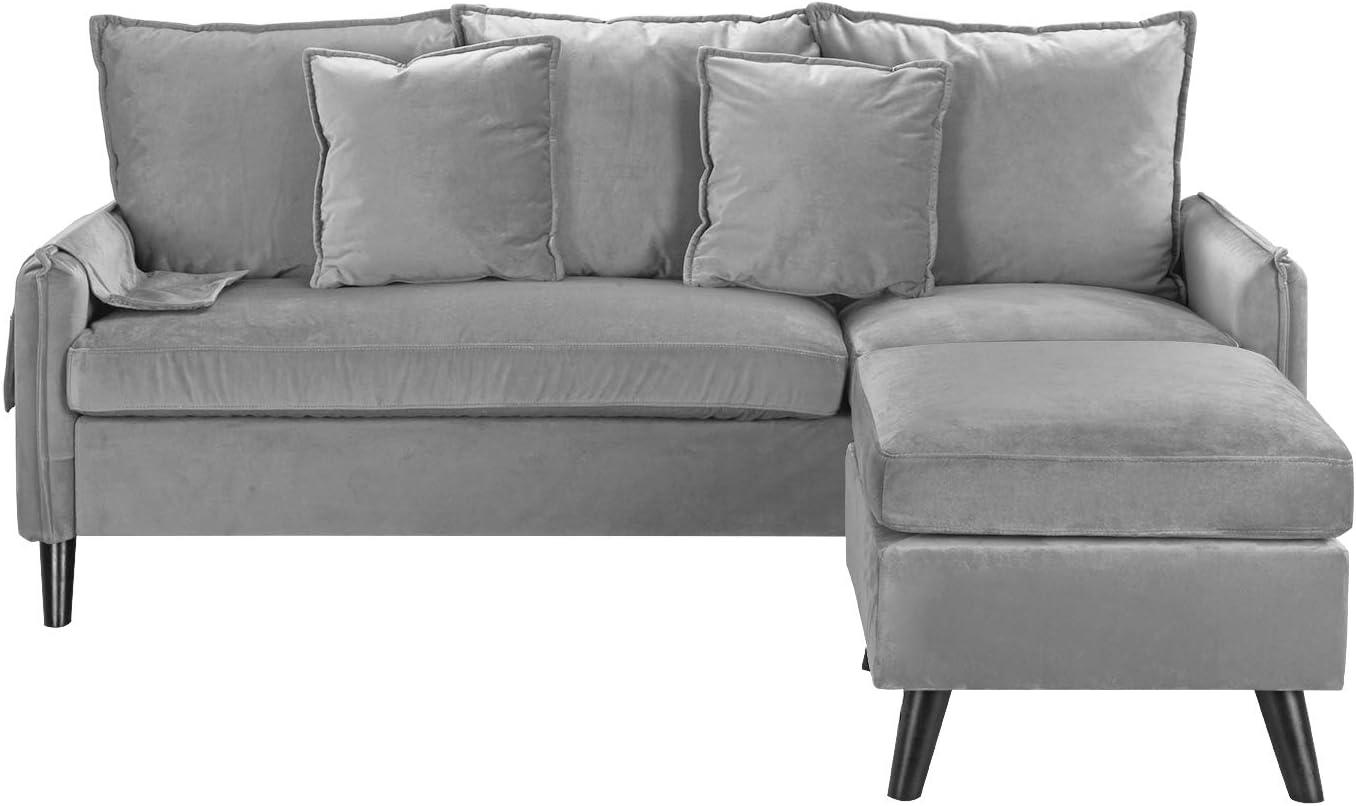 Divano Roma Furniture Classic Sectional, Light Grey