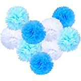 eBoot Pompon in Carta Velina Decorativo Palla Fiore Per Matrimonio Party Compleanno Docce da Sposa e altre Occasioni Speciali, 9pz