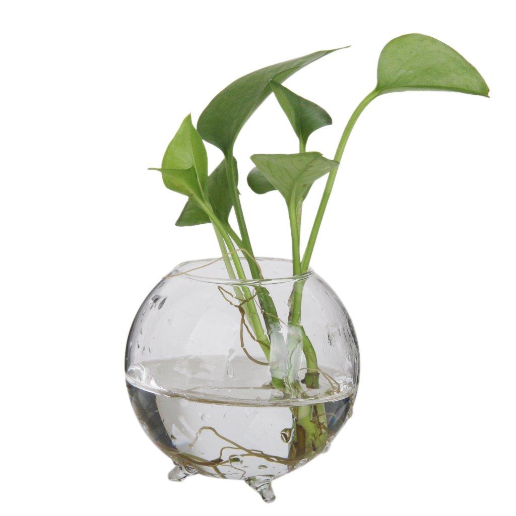 Glass Flower Hydroponic Vase Landscape DIY Bottle Terrarium Container