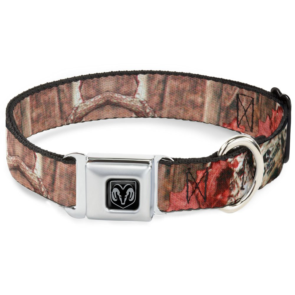 Buckle-Down Seatbelt Buckle Dog Collar Mossy Oak Break-Up Infinity 1  Wide Fits 11-17  Neck Medium