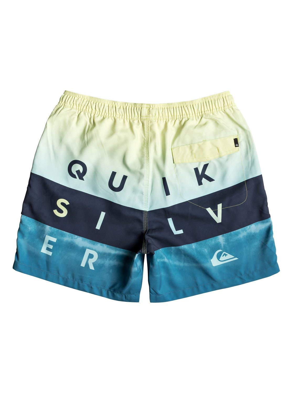 QUIKSILVER Word Block Shorts Hombre