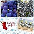 Homegrown Grape Seeds, 100, Grape 2 Bundle Concord Faith, Stocking Sized