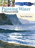 small water features 30 Minute Artist: Painting Water in Watercolour