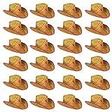 Beistle S50160-PAZ24 Bristle Cowboy Hats 24 Piece, Child size, Tan/Pink/White