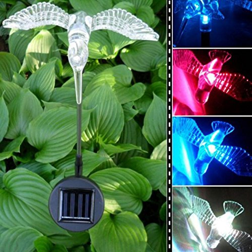 Solar Garden Lamp Buyer - 8