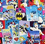 1/2 Yard - 'Girl Power' Super Girl, Bat Girl, Wonder Woman Cotton Fabric - Officially Licensed (Great for Quilting, Sewing, Craft Projects, Quilt, Throw Pillows & More) 1/2 Yard X 44