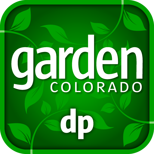 Denver Post Garden Colorado (Perennial Garden Grasses)