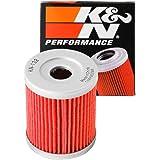 Filtro dellolio K/&N KN303