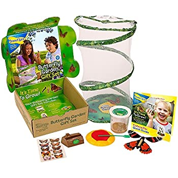 Insect Lore Live Butterfly Growing Kit Gift Box Set - 5 Caterpillars to Butterflies with Feeder Butterfly Toys and More - SHIP NOW