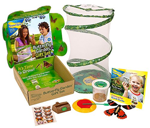 insect-lore-live-butterfly-growing-kit-gift-box-set-5-caterpillars-to-butterflies-with-feeder-butter