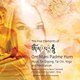 Kyпить The 5 Elements of Om Mani Padme Hum. Music for Tai Chi, Qigong, Yoga and Meditation на Amazon.com