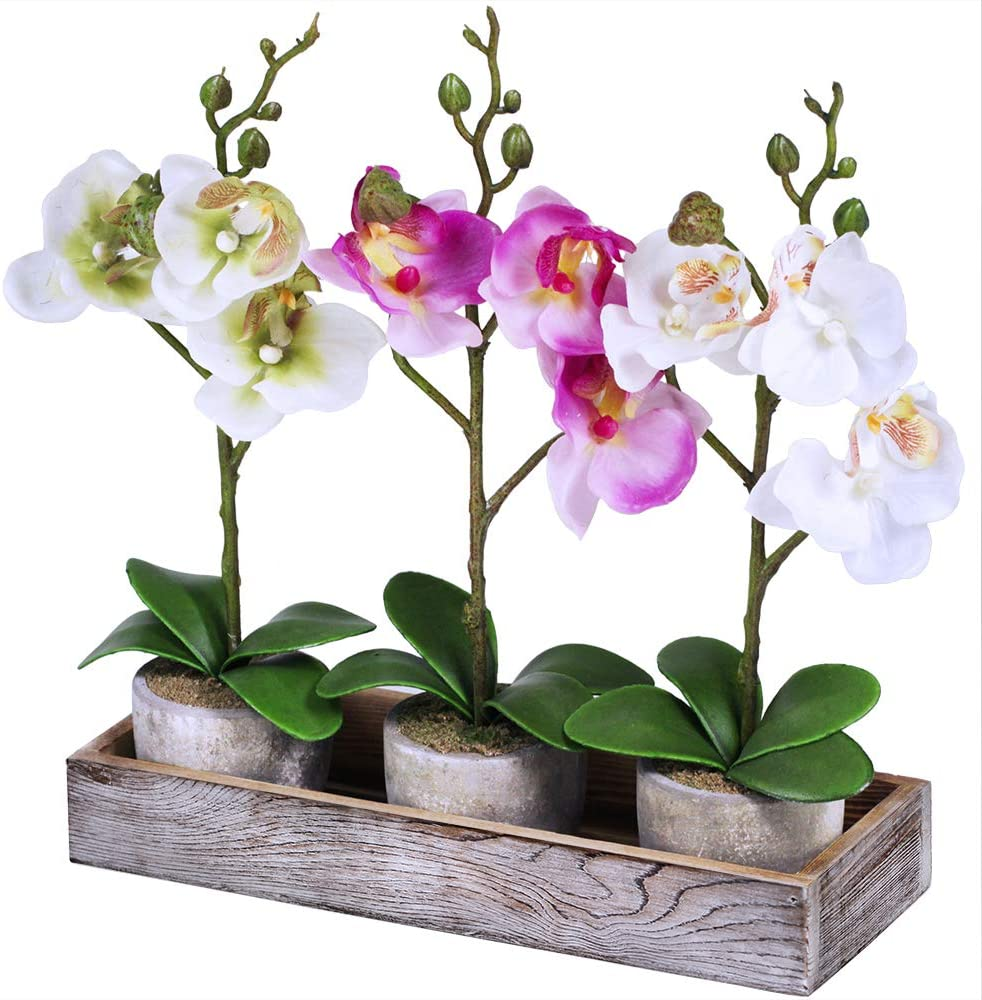 Set of 3 Fake Orchid Assortment Mini Potted Orchid Plants with Wood Planter Box Artificial Phalaenopsis Orchid Flowers in Pots for Indoor Office Desk Room Kitchen Table Décor Centerpiece Multicolor