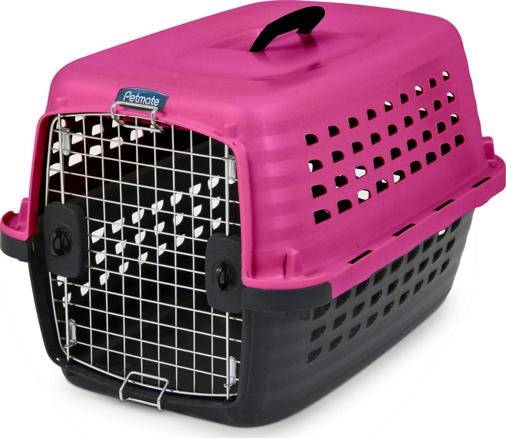 Petmate Compass Fashion Kennel Cat and Dog Kennel 4 Vibrant Colors 2 Sizes by Petmate