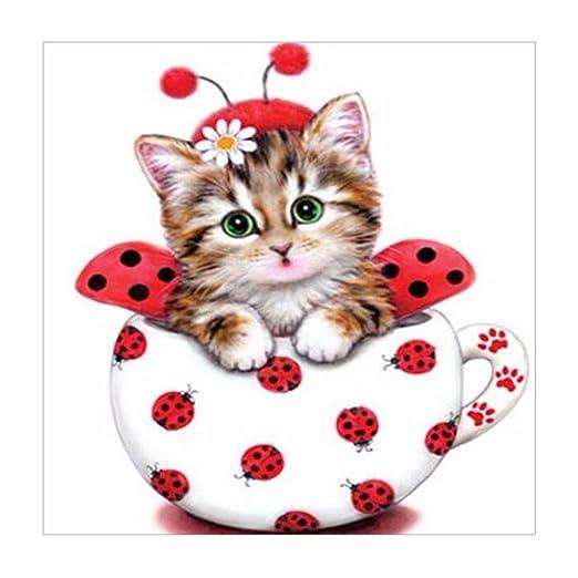 Decoración para el hogar 5D bonito gato diamante pintura ...