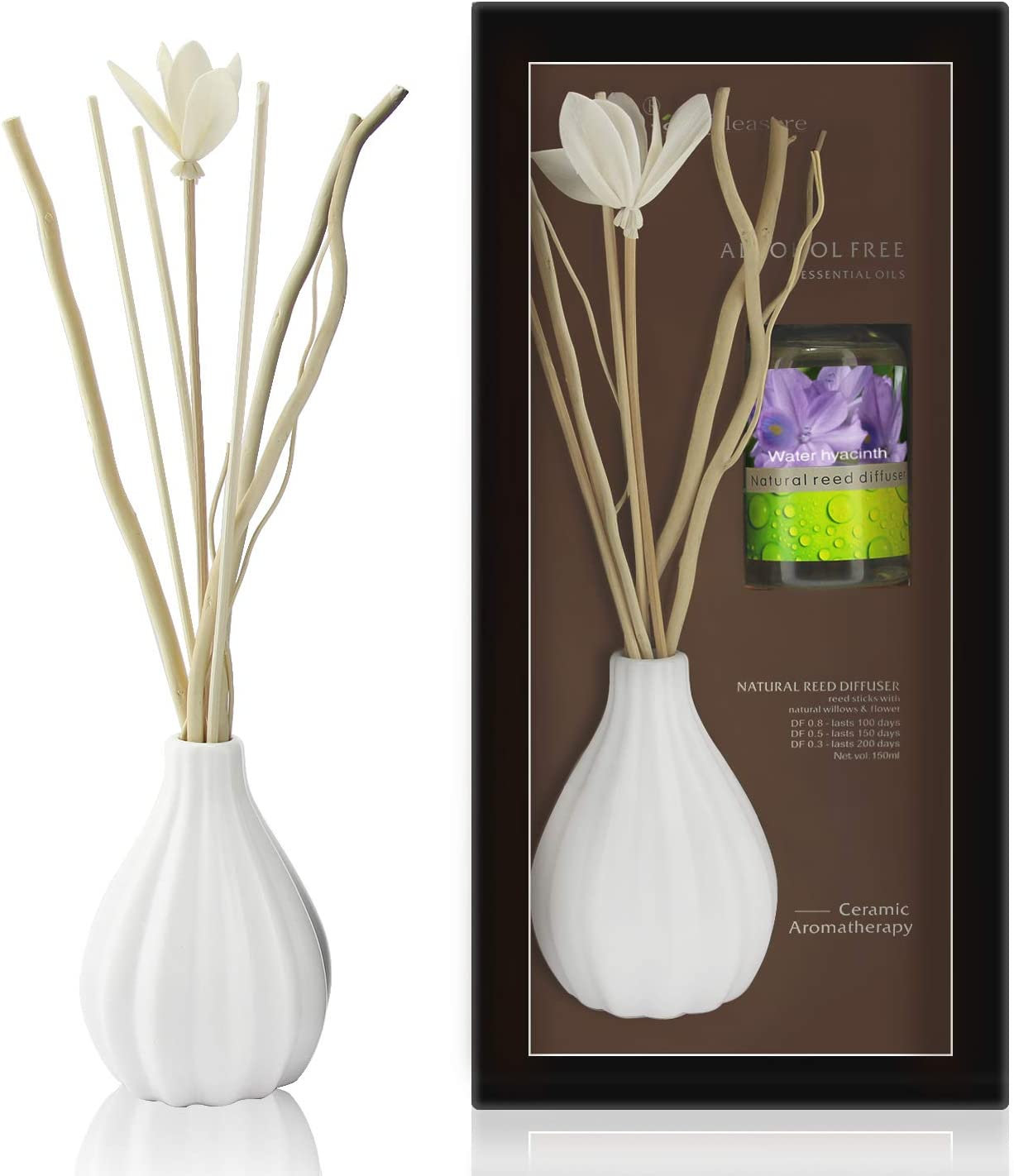 ap airpleasure Dried Flower Reed Diffuser Set, Natural Sticks, Elegant Ceramic Bottle, Aromatherapy Oil Set, Home Fragrance & Decorative Diffuser (WaterHyacinth)