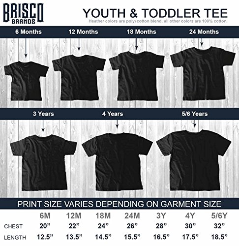 Brisco Brands Come to Dark Side Star Han Solo Wars Yoda Chewbacca Kylo Ren Toddler Infant T by Brisco Brands (Image #6)