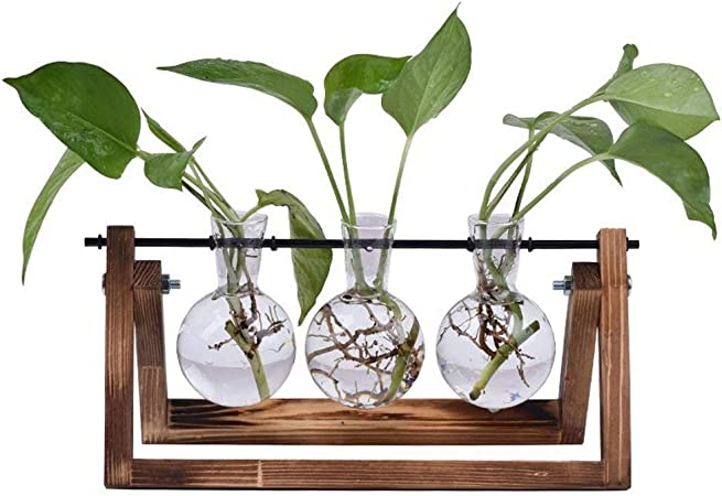 DESKTOP GLASS BULB PLANTER VASE WOOD STAND FOR HYDROPONICS PLANTS HOME DECOR C0