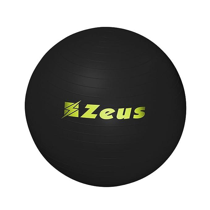 Zeus Gym Ball Balón Ideal para Fisioterapia – Rehabilitación ...