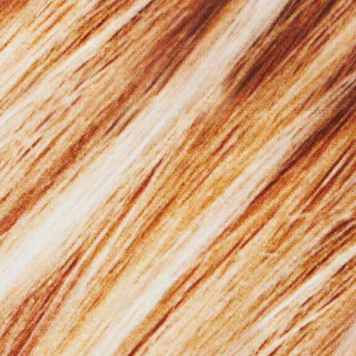L'Oréal Paris Frost and Design Cap Hair Highlights For Long Hair, H85 Champagne by L'Oreal Paris (Image #4)