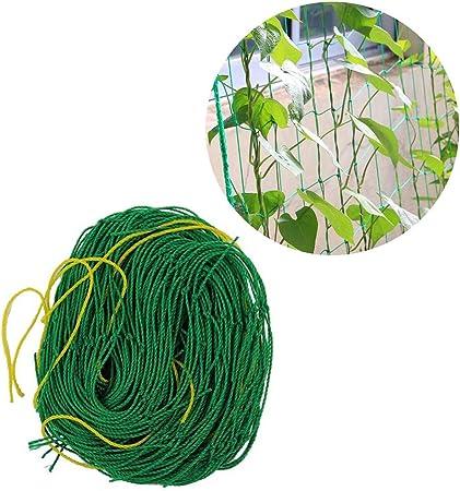 GYFHMY Conjunto de 5 Plantas para Todo Clima Red de Escalada Red de jardín Enrejado Cuerda Flexible Soporte de Trabajo Pesado Cultivo de Vid Cultivo de hidroponía 3,93