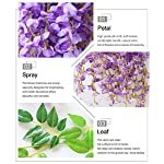 Mcupper-Pack-of-12-Artificial-Wisteria-Vine-Ratta-Hanging-Garland-36-Feet-Fake-Silk-Flowers-String-for-Home-Party-Wedding-Dcor-Green