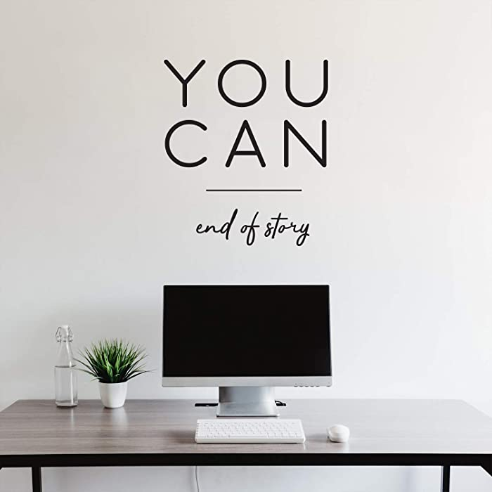 Vinyl Wall Art Decal - You Can End of Story - 25