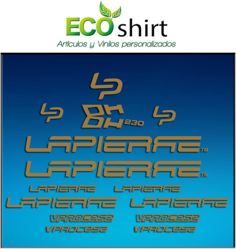 Ecoshirt RB-4C4U-3O2P Stickers Picture Lapierre Dh230 Am24 Frame MTB Downhill Silver