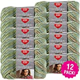 Red Heart 99428 Boutique Unforgettable Yarn 12/Pk-Meadow, Pack
