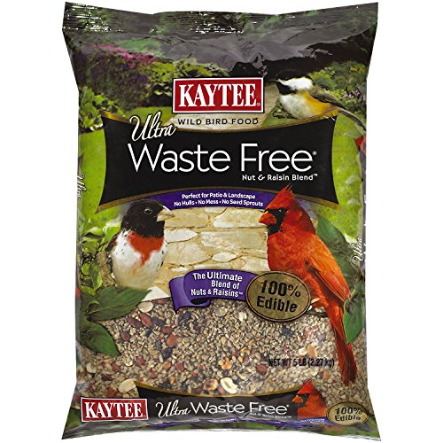 Free Raisin (Kaytee Waste Free Nut and Raisin Blend, 5-Pound)