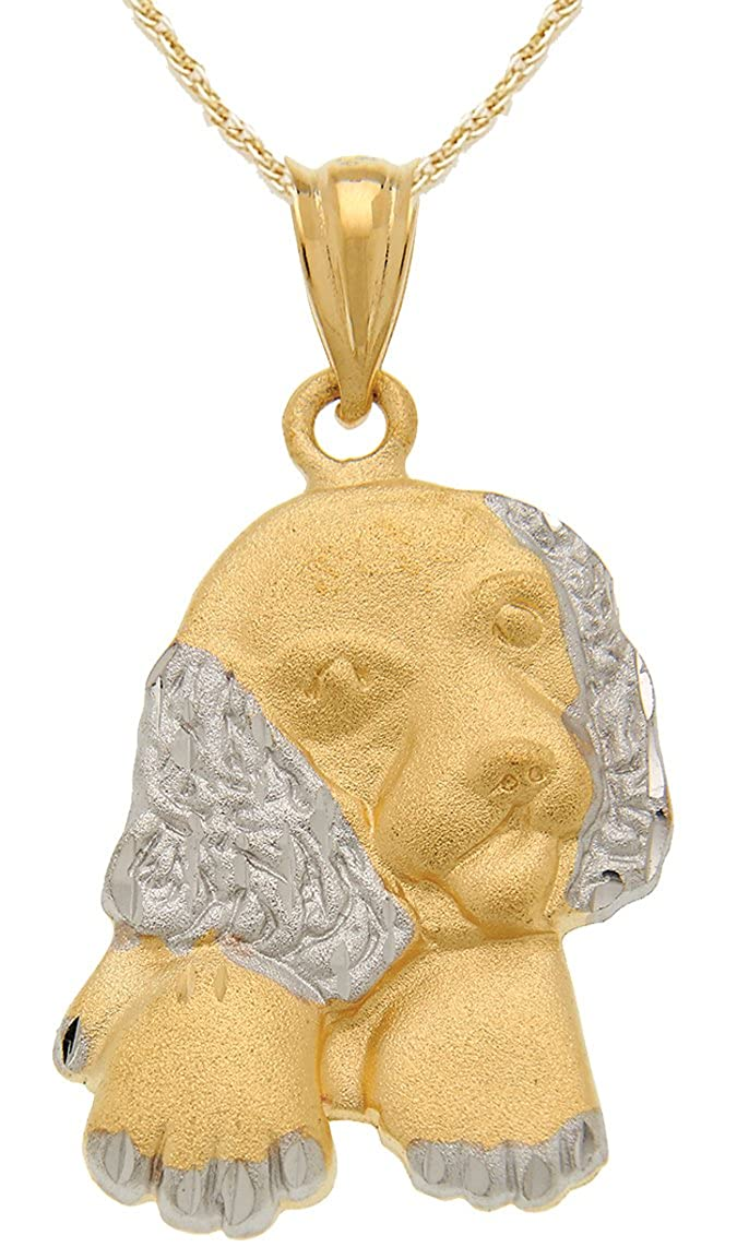 US Jewels And Gems 0.925 Sterling Silver /& Gold Plated Puppy Dog Pendant Rope Gold Filled Chain Necklace