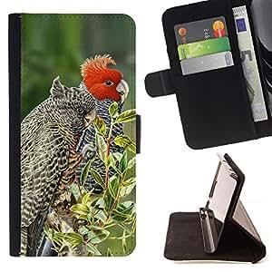 Momo Phone Case / Flip Funda de Cuero Case Cover - Plumes arbres Nature Printemps - Samsung ALPHA G850