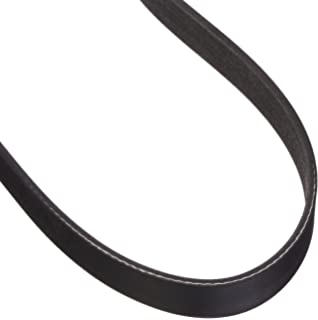 Dayco 6PK1230 V Ribbed Belt