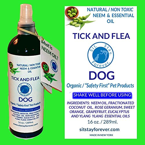 Natural Dental Wipes For Dogs