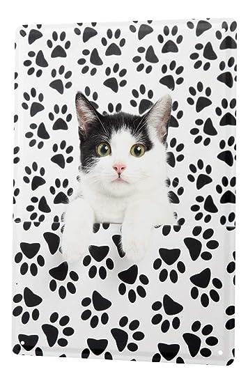 Amazon.com: Cartel de chapa gato decoración cachorro Paws ...