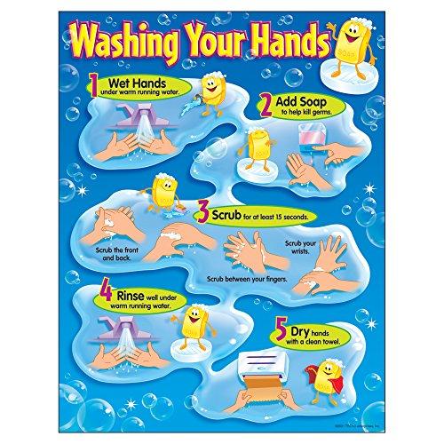 Trend Enterprises Washing Learning T 38085