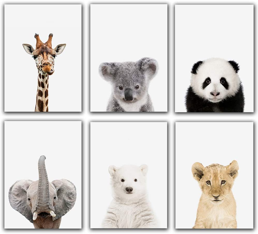 Baby Safari Animals Poster Prints Nursery Decor Pictures (8x10) | Set of 6 (Unframed) Cute Animal Photography Wall Prints for Baby Boys & Girls Room Panda,Giraffe,Elephant