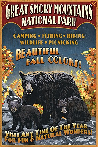 Great Smoky Mountain National Park, Tennesseee - Black Bears Vintage Sign (9x12 Art Print, Wall Decor Travel Poster)