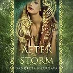 After the Storm   Sangeeta Bhargava