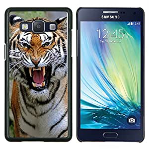 - Tiger Heart - - Cubierta del caso de impacto con el patr??n Art Designs FOR Samsung Galaxy A5 A5000 A5009 Queen Pattern