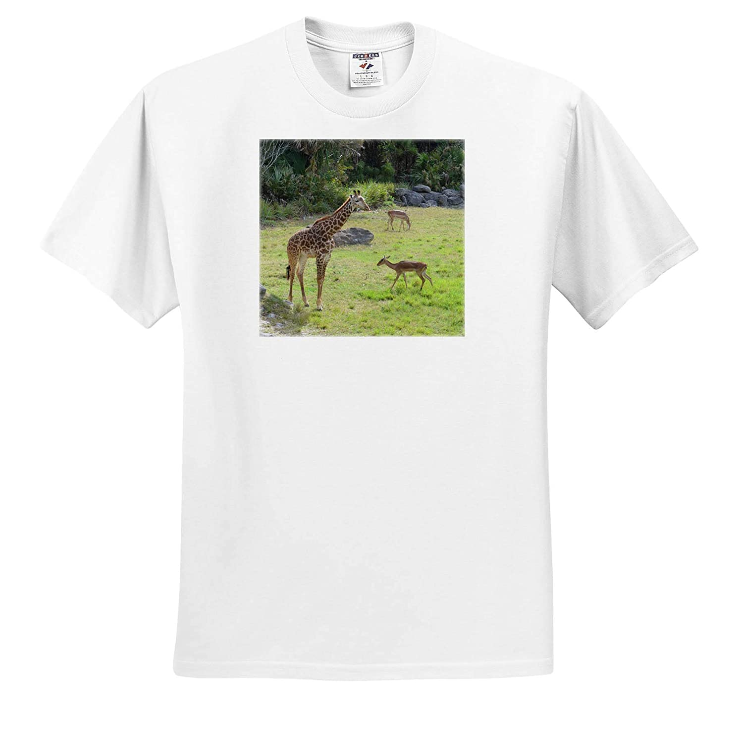 3dRose Susans Zoo Crew Animal T-Shirts Giraffe and Antelope on Grass Animal