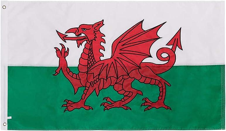 Lixure Bandera de Gales 5ftx3ft dragón galés Bordado de una Sola Cara Proceso Bandera Grande Premium Calidad 90 x 150 cm Durable 210D Bandera de Nailon: Amazon.es: Jardín