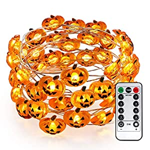 Brizled Led Fairy String Lights, Battery/USB Copper Wire String Lights
